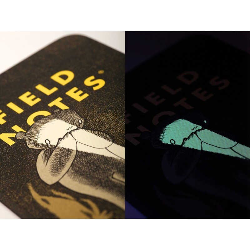 Field Notes® Haxley Illustrated Story Book & Sketchbook 64 Pages - Pack of 2